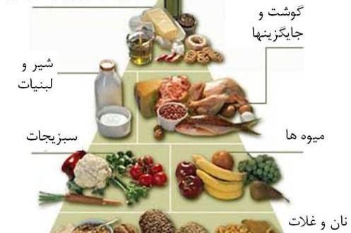 دالنود پاورپوینت تغذیه و بهداشت مواد غذایی
